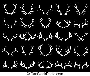 deer horns - White silhouettes of antlers on a black...