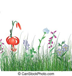 colorful grass background - Vector illustration grass...