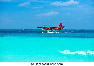 gemelo, nutria, hidroavión, maldivas