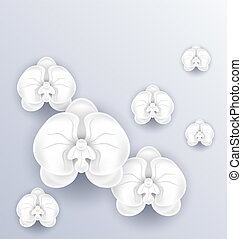 Romantic greeting card with beautiful orchids and copy space for