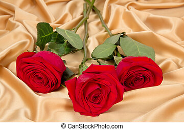 bouquet of red roses on gold fabric - bouquet of three red...