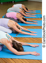 Yoga class in childs pose in fitness studio at the leisure...