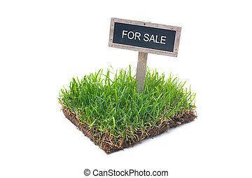 land for sale - For sale sign in green grass Isolated on...