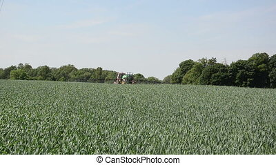 spraying corn field - tractor with an outstretched long...