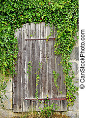 old,medieval wall with wooden gate and ivory