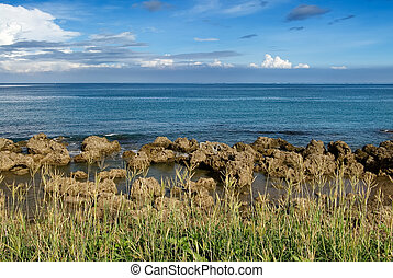 coral reef rock coastline with grass - It is a beautiful...