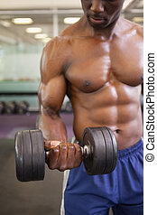 Muscular man exercising with dumbbell in gym - Shirtless...