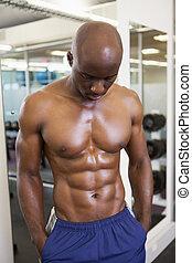 Shirtless muscular man in gym - Shirtless young muscular man...