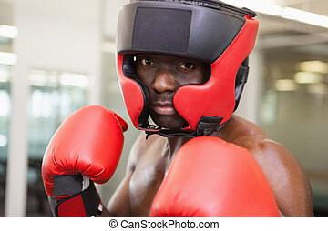 Male boxer in defensive stance - Close up of a male boxer in...