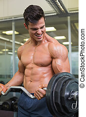 Shirtless muscular man lifting barbell in gym - Portrait of...