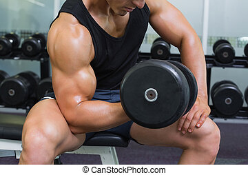 Mid section of muscular man exercising with dumbbell - Mid...