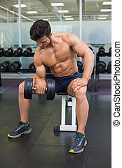 Muscular man exercising with dumbbell in gym - Portrait of a...