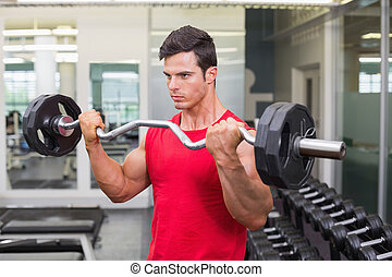 Muscular man lifting barbell in gym - Portrait of a muscular...