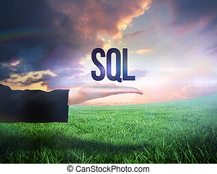 Businesswomans hand presenting the word sql against green...