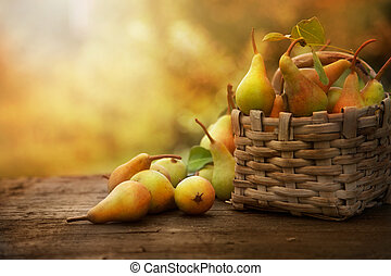 Autumn pears - Autumn nature concept. Fall pears on wood....