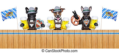 Bavarian dogs - three bavarian dogs behind a fence with beer...