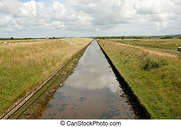 Tidal canal. - A constructed tidal canal with high grass...