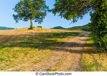 Typical Italian landscape in Tuscany