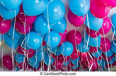 Balloons Up - Blue and pink balloons up on a ceiling.