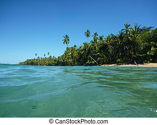 Exotic Beach at Costa Rica. Tropical Adventure. Traveling...