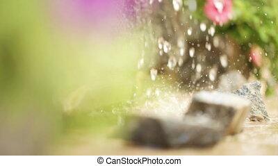Drop on flowers