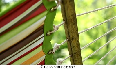 Hammock in summer