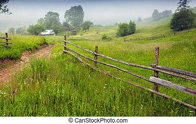 Haymaking in a Carpathian village. Ukraine, Europe....