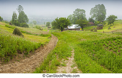 Haymaking in a Carpathian village. Ukraine, Europe....