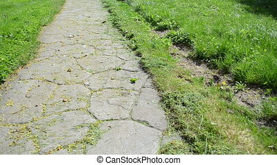 man cut grass stone path