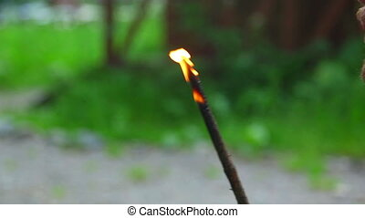 Burning twig - Smoldering birch twig with a lot of smoke....