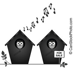 Noisy neighbours - Monochrome noisy neighbours with...