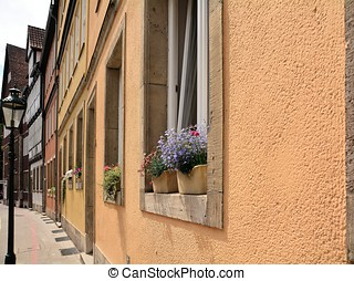 flowering plants in flower boxes in the window of a house