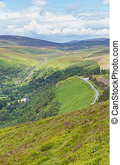 Winding Road through Wicklow Mountains
