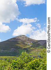 Vertical image of Great Sugar Loaf