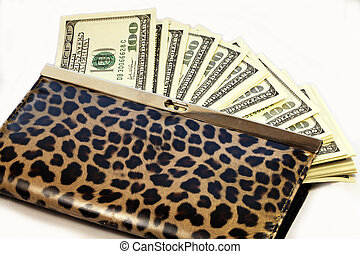 money - change purse with one hundred dollar bills