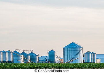 on american farm in kentucky
