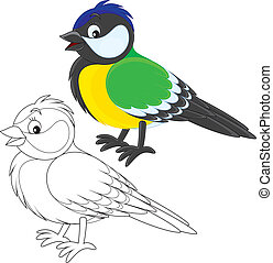 Tomtit - titmouse, color and black and white illustrations...