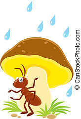 Ant - small brown ant sitting under a big mushroom in rain