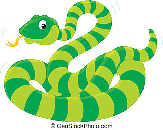 Snake - green striped snake