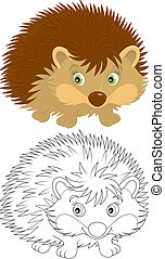 Hedgehog brown, color and black and white illustrations on a...