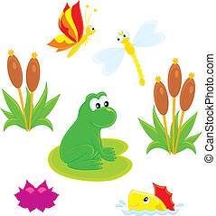 Pond - green frog, dragonfly, butterfly, fish, water lily...