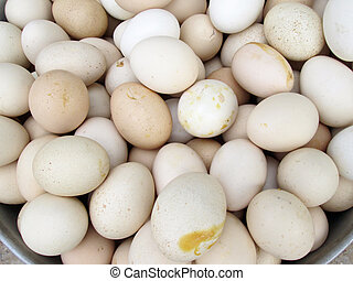 brown eggs