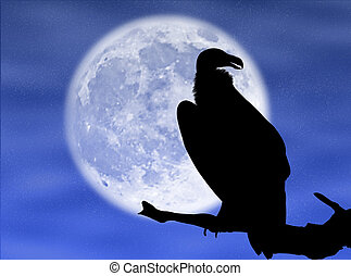 Eagle in the moon - Eagle silhouette in the moon and in the...