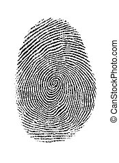 Fingerprint - Scanned black and white fingerprint criminal...