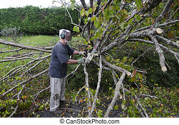 Storm damage - MANGONUI, NZL - JULY 09 2014:A man cutting a...