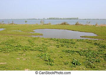 water landscape - Water landscape in Holland