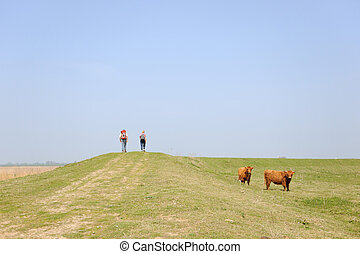 Walking in nature - couple is walking in nature with...