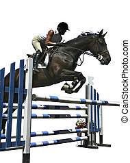 Rider and horse jump a fence in competition