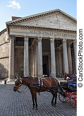 Pantheon Rome - Horse in front of Pantheon temple to all...
