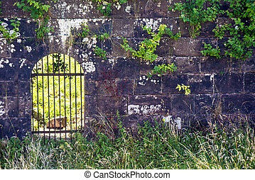 old wall of an citadel with an iron gate